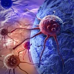 منح سعودية براءة اختراع في علاج الأورام السرطانية