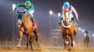 المنظمة العالمية لسباقات الخيل ترفع تصنيف السعودية